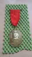 Medaille / Medal - Medaille - 10 E Kon. Juliana Wandeltochten , Velp - The Netherlands - Royal/Of Nobility