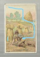 **L'OBSERVATION**------------illustrateur : J O B ---------------- - Scoutisme