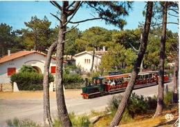 France - Gironde - Bassin D'Arcachon - Cap Ferret - Le Petit Train - Artaud Nº 21 - Ecrite, Timbrée - 6263 - Arcachon