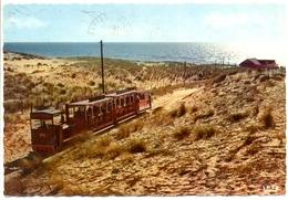 France - Gironde - Bassin D'Arcachon - Cap Ferret - Le Petit Train -Théojac Nº 54 - Dentelée, écrite, Timbrée - 6265 - Arcachon