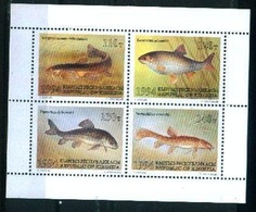 N10- See Life. Fish. Year 1994. - Fishes