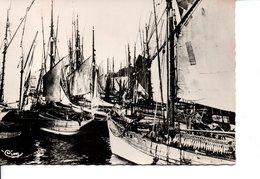 CPSM DOUARNENEZ Dans Le Port Retour De Pêche - Douarnenez