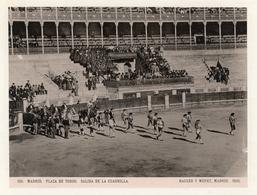 Albumen Photograph - Plaza De Toros Madrid SPAIN - C.1895 (20 X 15cm) - Alte (vor 1900)
