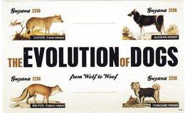 Entwicklung Der Hunde Kleinbogen Guyana - Chiens