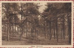 Nijlen Boschzicht Boszicht Kempen (In Zeer Goede Staat) - Nijlen