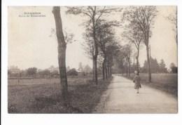 Sermaises - Route De Malesherbes - édit. Berthomier  + Verso - Frankreich