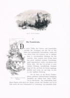 324 E.T.Compton Tonalestrasse Nonsberg Cles Artikel Mit 4 Bildern 1896 !! - Revues & Journaux