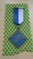 Medaille / Medal - Medaille - Bos En Weidetocht Dalfsen ( Z.W.V ) - The Netherlands - Pays-Bas