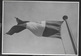 LA BANDIERA DELLA MARINA ITALIANA - FORMATO 14,50X10,50 - ORIGINALE D'EPOCA FINE ANNI '40 - Oggetti