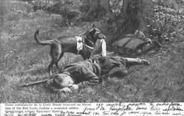 Militaria - Chien Ambulancier De La Croix Rouge Trouvant Un Blessé - Guerre 1914-18