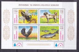 Turquie, Bloc  N°32,   Neuf **, 1996, Cote 5€ (W1903/T072) - 1921-... Repubblica