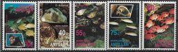 1991 ANTILLES NEERLANDAISES 893-97 ** Vie Sous-marine, Poissons - Antilles