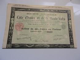 Société Coloniale De La Cote D'ivoire Et De La Haute Volta - Shareholdings