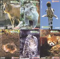 Série Complète LOT De De 6 Cartes Japon ANIMAl - ZOO DE TAMA / GIRAFE KOALA PETIT PANDA LEOPARD DES NEIGES - Tarjetas Telefónicas