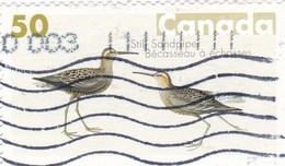 Canada YV 2147 O 207 Bécasseau - Cigognes & échassiers