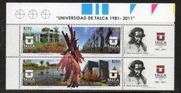 2011 CHILE  - Birds, University - Cygnes