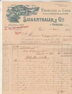 Suisse Facture Illustrée 5/6/1909 SIEGENTHALER Fromages Emmenthal & Gruyère GOSSAU Succursale Halles Paris - Suisse