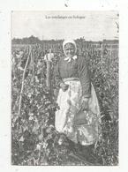 Cp, Vignes , LES VENDANGES EN SOLOGNE ,  COLL. LIGNEAU ,n° 3202 , Vierge - Vines