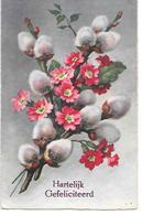 Flowers, Fleurs, Blumen, Floreale, Willow Catkins, Weidenkätzchen, Chatons De Saule - Anniversaire