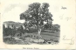 1898 - JAJCE ,  Gute Zustand, 2 Scan - Bosnie-Herzegovine