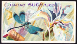 CHROMO Chocolat SUCHARD   Animaux    Libelle    Libel    Insects  Serie 163 - Suchard