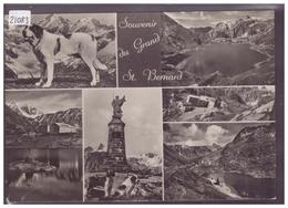 FORMAT 10x15cm - SOUVENIR DU GRAND SAINT BERNARD - TB - VS Valais