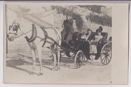 CARTE PHOTO : ATTELAGE - UNE EXCURSION D'UN COUPLE EN  FIACRE OU EN LANDAU - UN COCHER ET UN CHEVAL - 2 SCANS - - Taxi & Carrozzelle