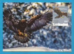 Liechtenstein 2019 , EUROPA CEPT Birds - Maximum Card - Erstagsstempel Vaduz 4.März 2019 - 2019