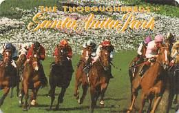 Santa Anita Park Arcadia, CA - BLANK Thoroughbreds Club Card - Casino Cards