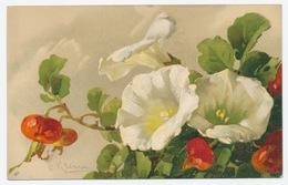 Bloemen Fleurs Flowers: Catharina Klein - Klein, Catharina