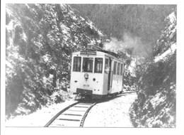 Tram - Ligne Paliseul-Pussemange. - Non Classés