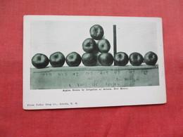 Apples Grown By Irrigation  Artesia  New Mexico    Ref 3211 - Estados Unidos