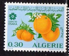 ALGERIE YT N° 514 Neuf Avec Charnière Lot 269 - Algeria (1962-...)