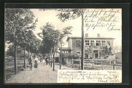 AK Lubmin, Spaziergänger In Der Promenade - Lubmin