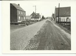 Weg Brussel Kortrijk Toestand Avelgem   (556) - Avelgem
