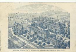 Institut Agricole SJ Berchmans Avelghem   (558) - Avelgem