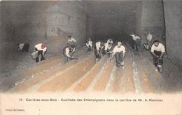 """¤¤  -  CARRIERES-sous-BOIS   -  Cueillette Des Champignons Dans La Carrière De Mr """" A. Manceau """"      -  ¤¤ - Carrières-sur-Seine"""