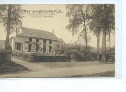 Groenendael Tervueren Laiterie Des Sept Drèves - Torhout