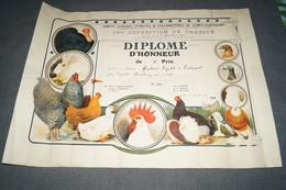 Avicole Et Colombophile,Pigeon,diplome De 1924,Jumet - Gohyssart,Martinet Léopold,54 Cm. Sur 40 Cm. - Diplome Und Schulzeugnisse