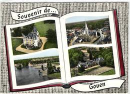 1 Cpsm Souvenir De Goven - France