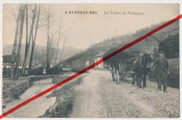 Rendeux - Rendeux-Bas - Le Vallon De Nohaipré - 1914 - Feldpost - Rendeux