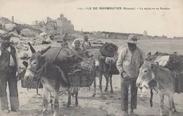 ILE DE NOIRMOUTIER: La Récolte Du Varech - Ile De Noirmoutier