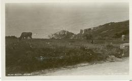 Jersey; Rozel Lane (Cows) - Not Circulated. (W. De Guerin) - Jersey