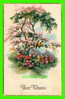 FLOWERS, FLEURS -  POMMIER EN FLEURS AVEC 2 OISEAUX - BEST WISHES - J. P. - - Fleurs