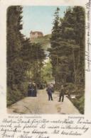 AK - Tschechien - REICHENBERG (Liberec) - Blick Auf Die Tugemannshöhe 1901 - Tschechische Republik