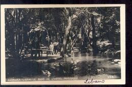 Libanon - Chtaura - Liban - Parc De HOtel Massabki 1950 - Libanon