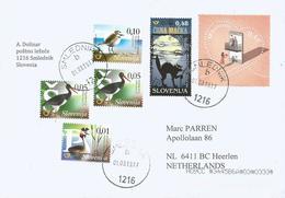 Slovenia 2019 Smlednik Black Stork Kentish Plover Charadrius Alexandrinus Great Crested Grebe Bird Cat Computer Cover - Cigognes & échassiers