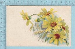 Carte Postale CPA - Marguerites - Used Voyagé En 1910  + CND Timbre, Send To Windsor Mills Quebec - Cartes Postales