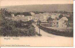 WEGNEZ PANORAMA Pepinster Non Voyagée   1902 ?   Eenvoudig  1105 D3 - Pepinster