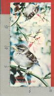 CARTOLINA NV ITALIA - PALIANO (FR) - La Selva Parco Uccelli - Passera D'Italia - Biglietto Ridotto - 10 X 15 - Frosinone